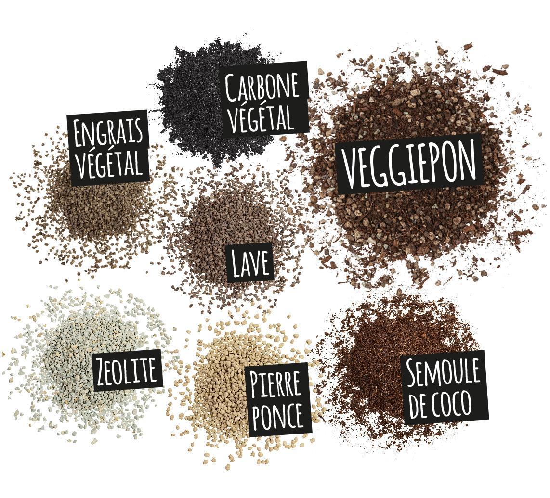 'Composantes de VEGGIEPON: Carbone végétal