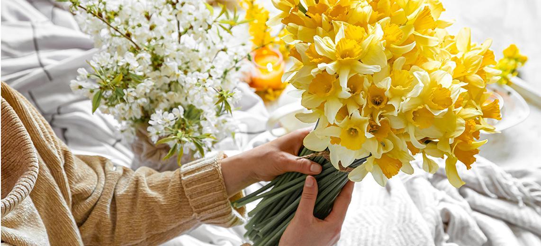 Frau hält einen Strauß mit gelben Narzissen in den Händen
