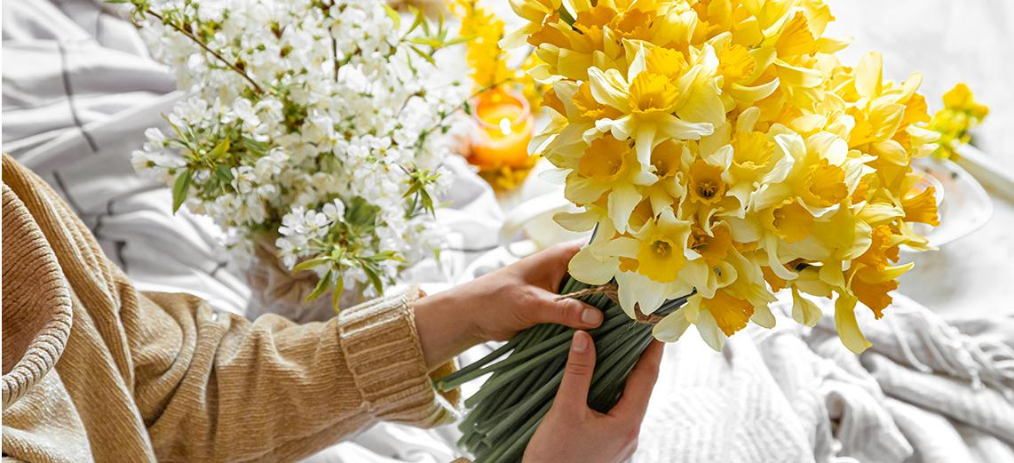 Woman holds a bouquet of yellow daffodils in her hands