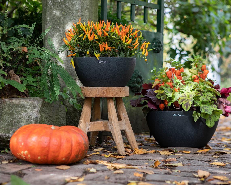 Schaurige Halloween-Deko mit dem CUBETO Color 30 und 40 in graphitschwarz