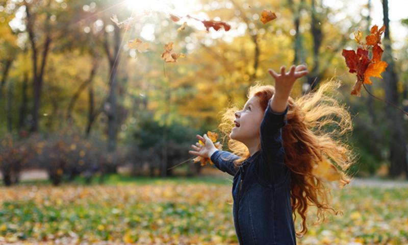 tw-autumn-garden_navimage_de