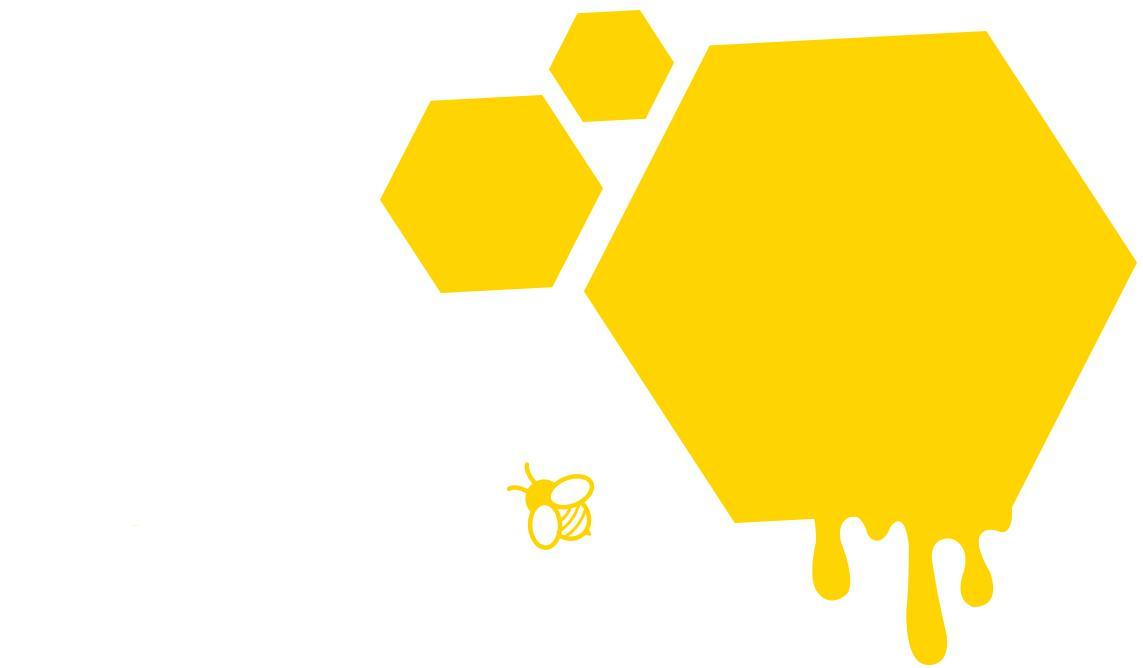 Drei Bienenwaben mit Biene