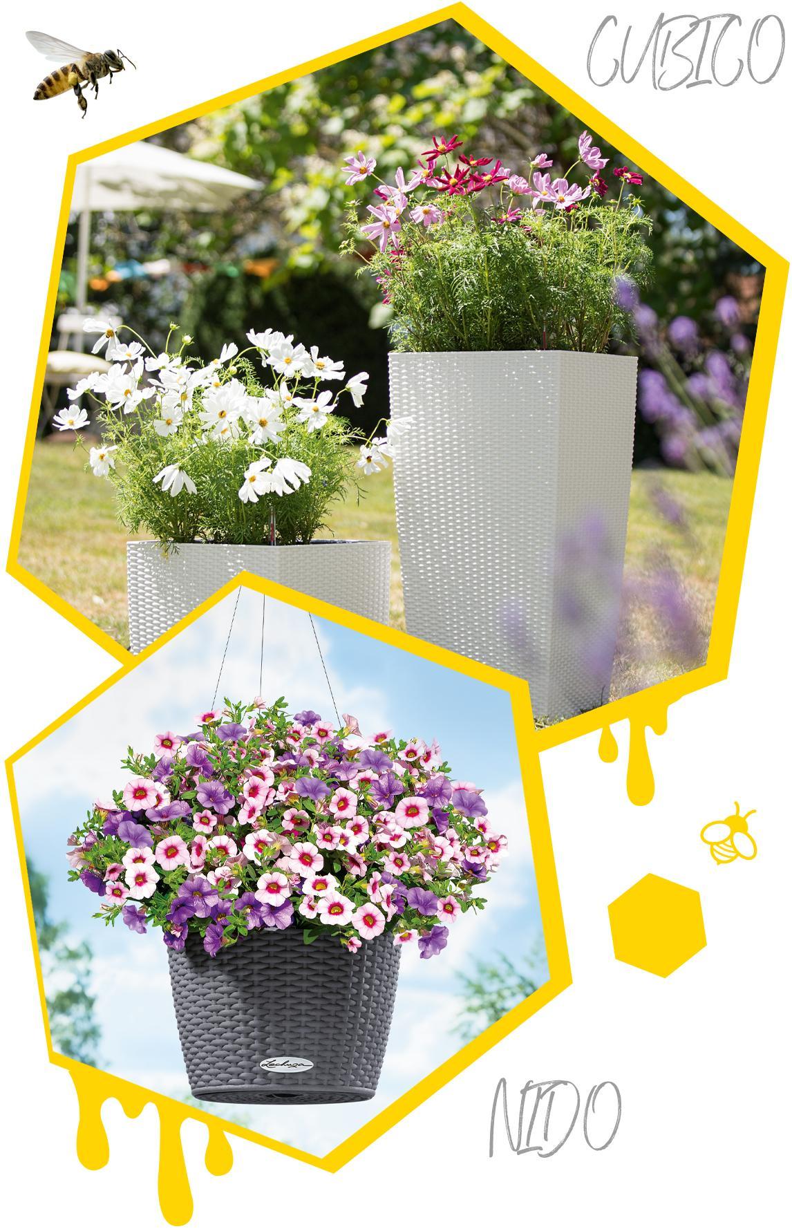 Zwei Waben mit bepflanzten LECHUZA Cottage Gefäßen mit Sommerblumen