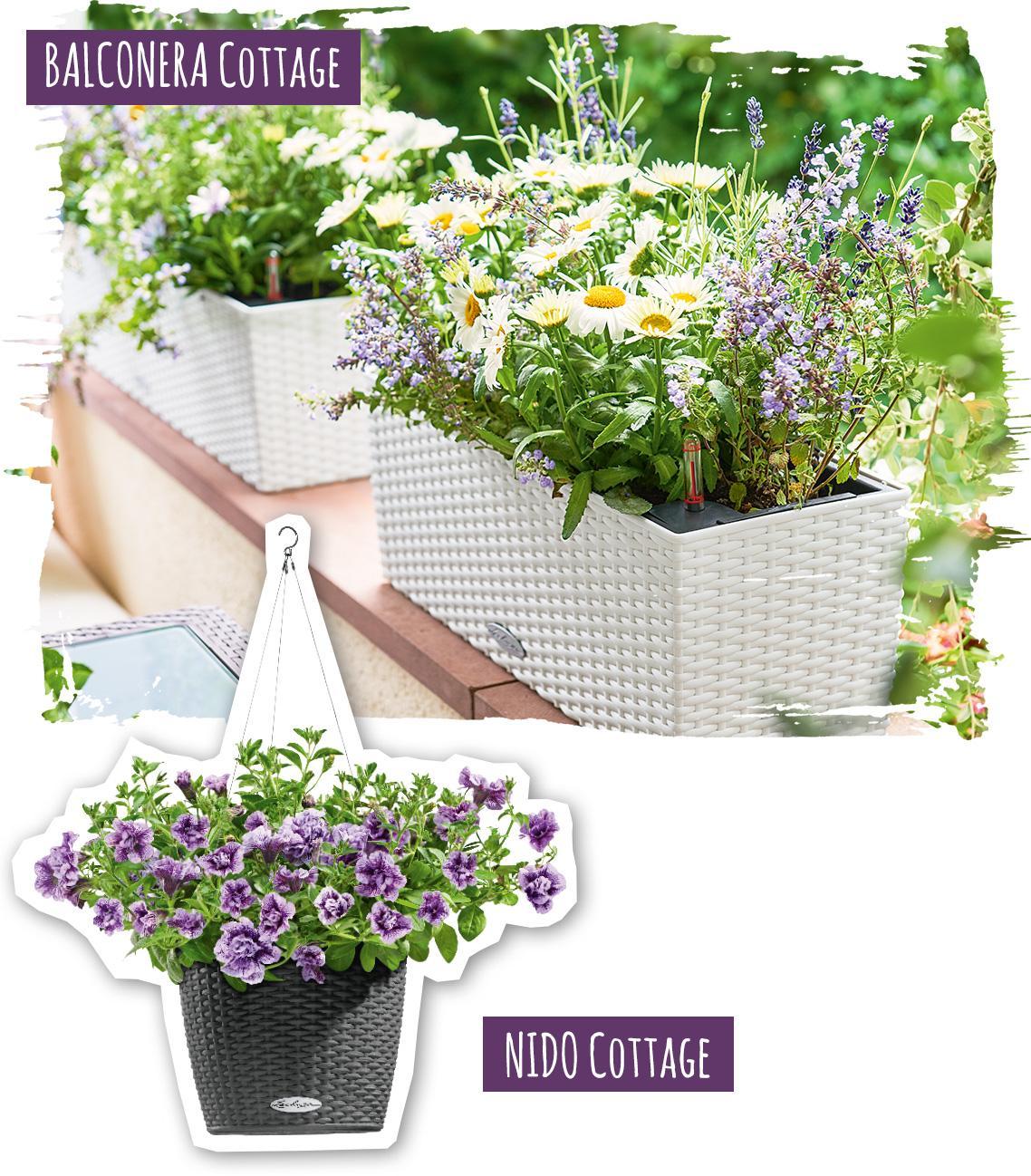 BALCONERA und NIDO Cottage mit Blumenarrangement