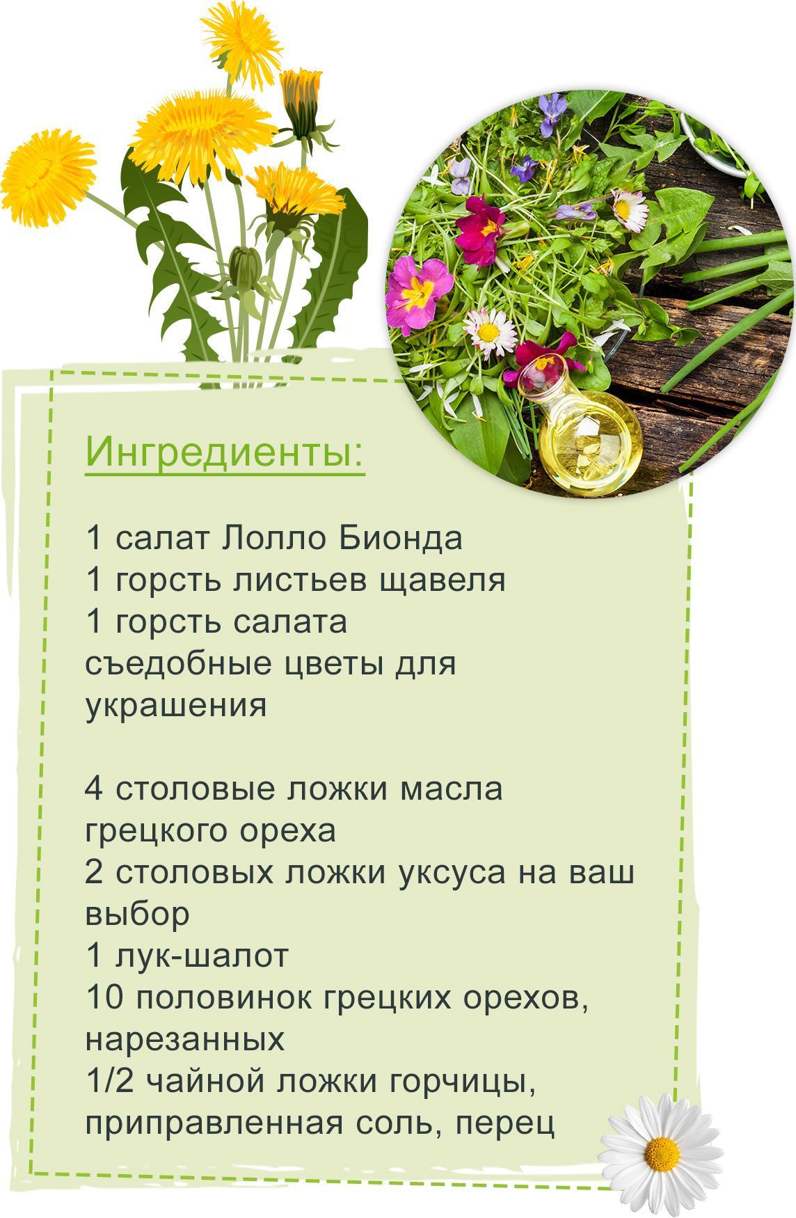 Красочный цветочный салат