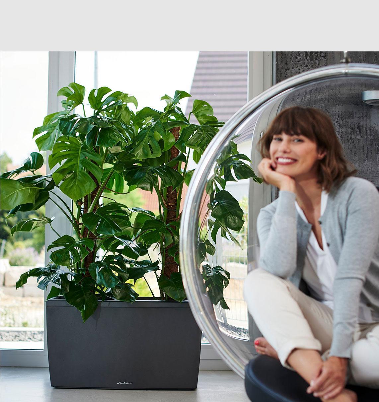 'Junge Frau sitzt lachend in einem Plexiglas-Hängesessel