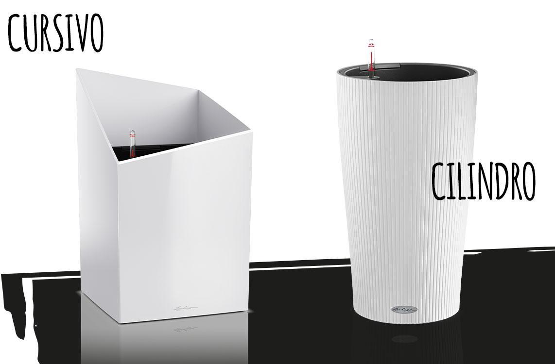 CURSIVO and CILINDRO in white