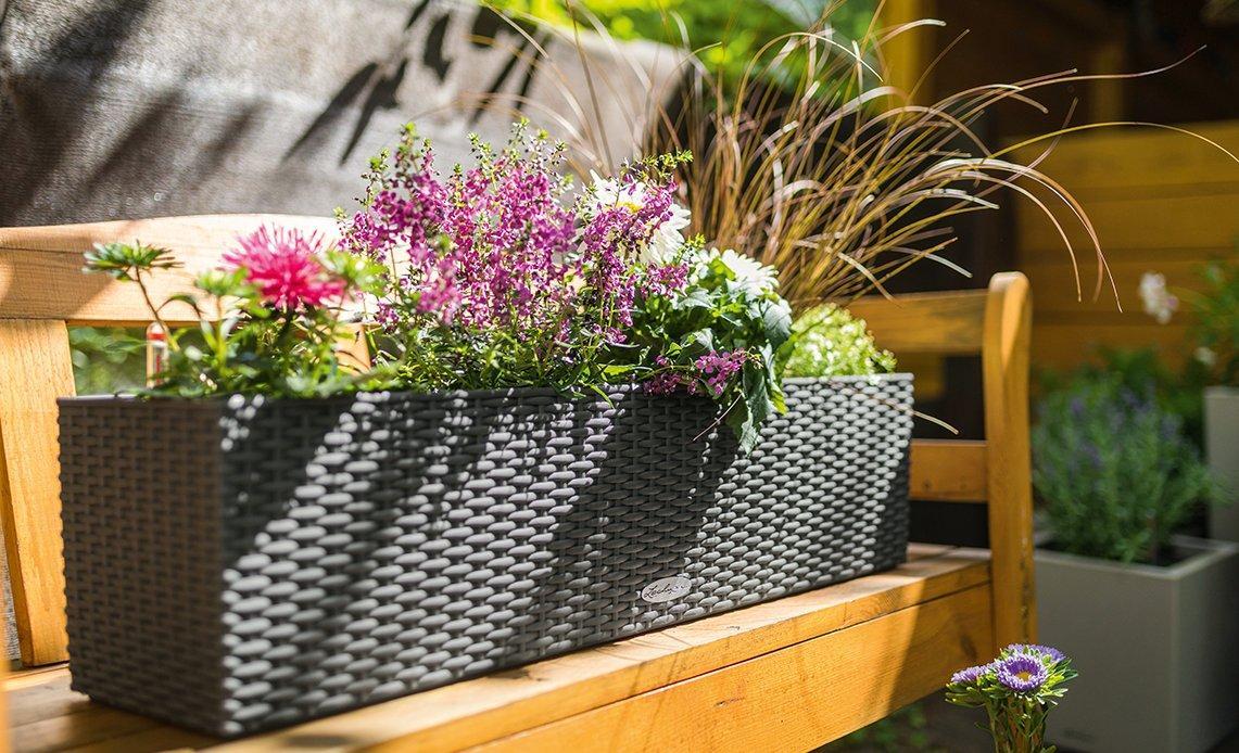 Blumenarrangement im BALCONERA Cottage 80