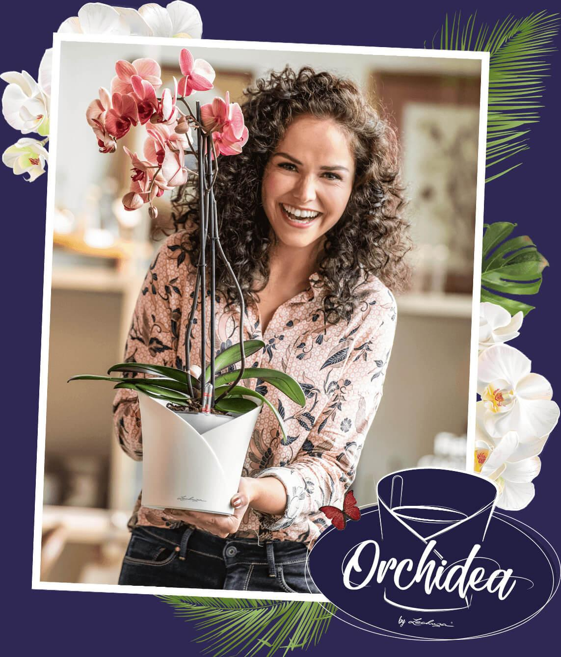 ORCHIDEA Il vaso per orchidee all-in-one
