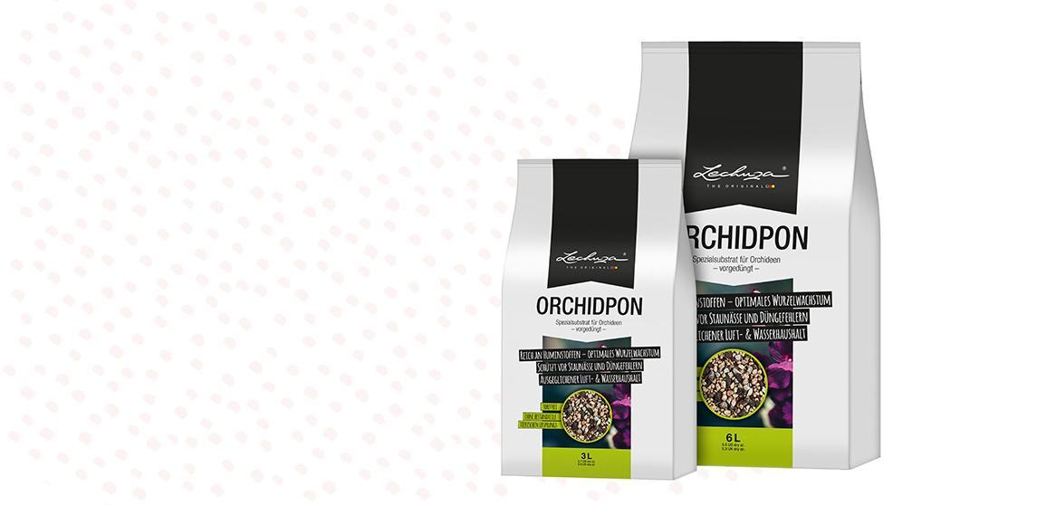 ORCHIDPON - Speciaal substraat voor orchideeën