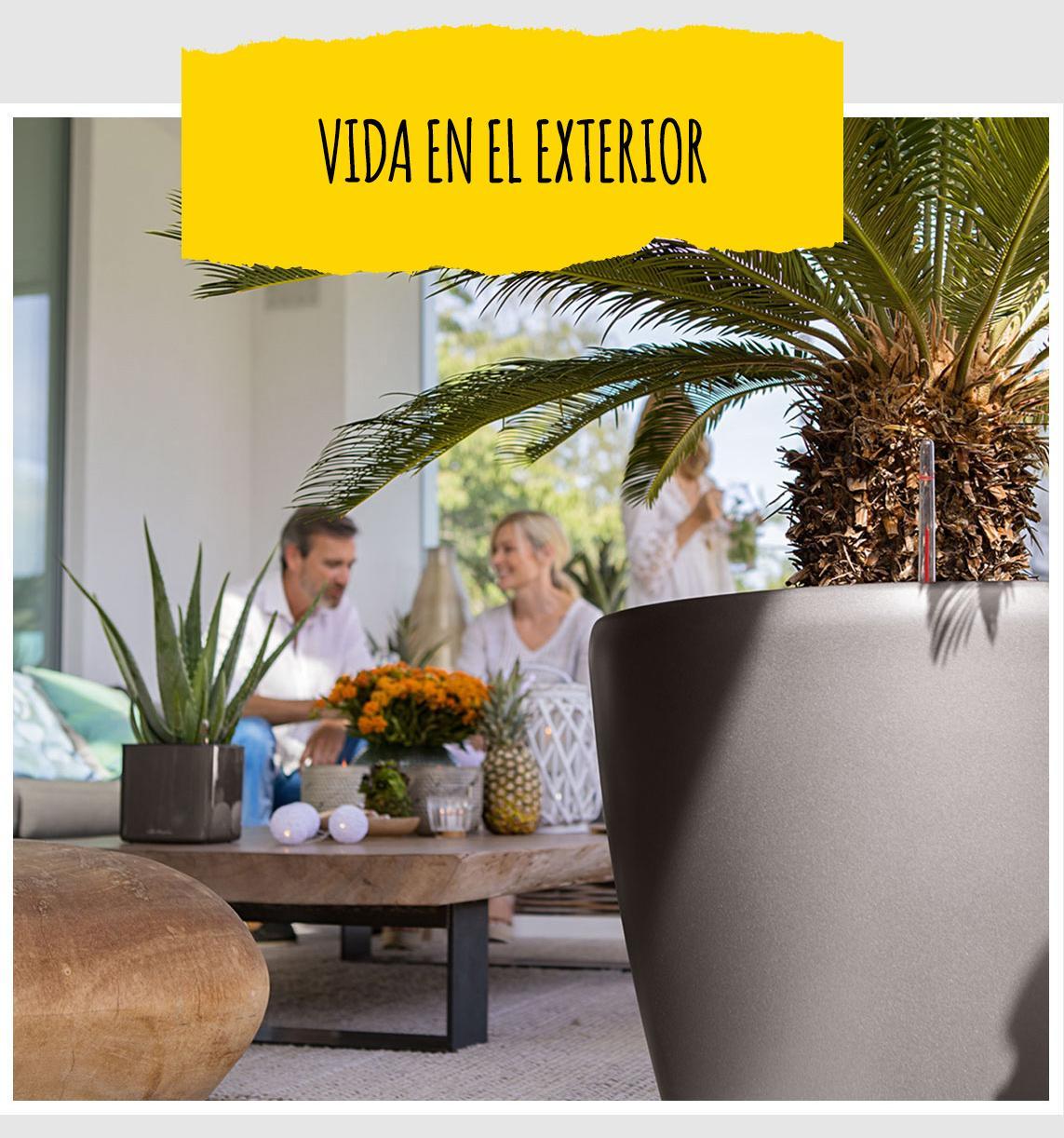 Al fondo puede verse una maceta grande CLASSICO Premium de LECHUZA de color antracita con una palmera. Al fondo pueden verse dos amigos sentados junto a una mesa baja con una bonita decoración.
