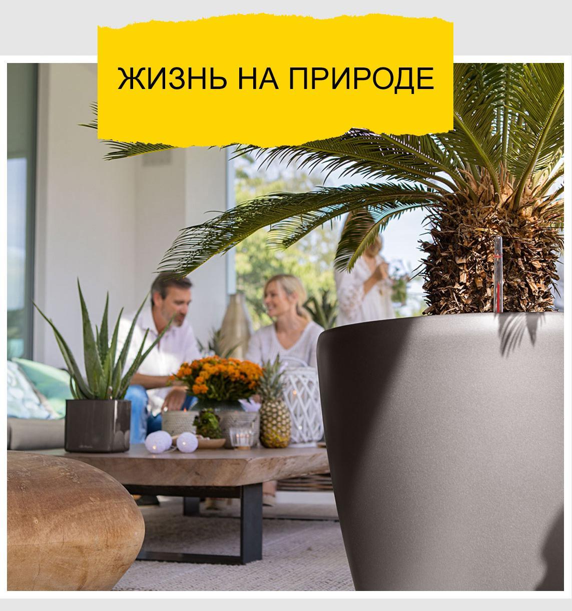 'На переднем плане стоит большой LECHUZA CLASSICO Premium цвета антрацит с пальмой. На заднем плане - красиво украшенный журнальный столик