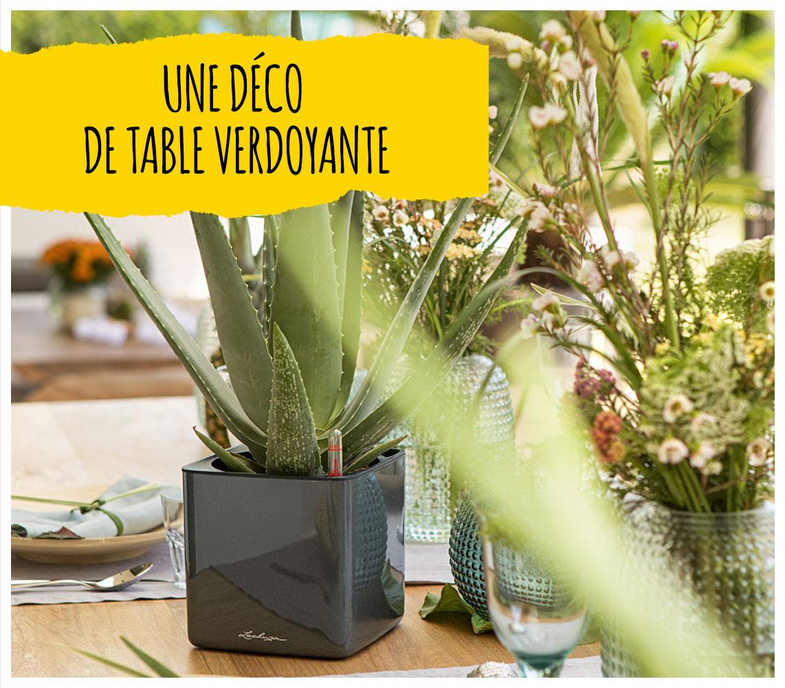 'Le LECHUZA CUBE Glossy en anthracite