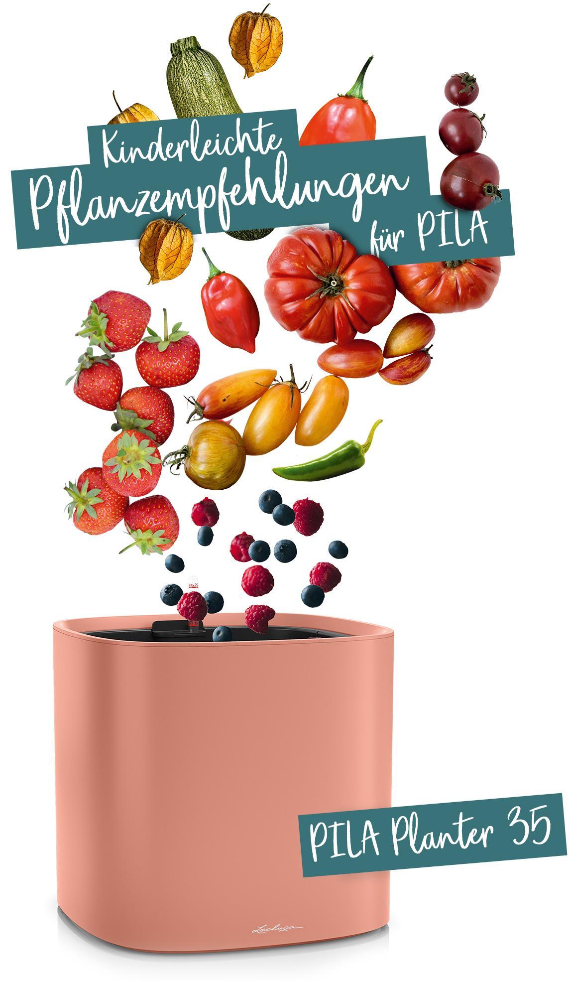 PILA Planter 35 empfohlen für Obst und Gemüse