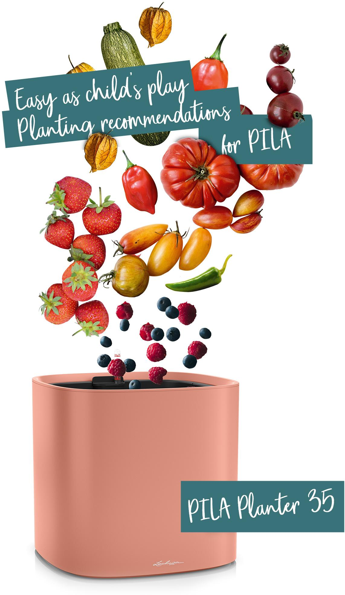 PILA Planter 35 recommended for fruit and vegetables