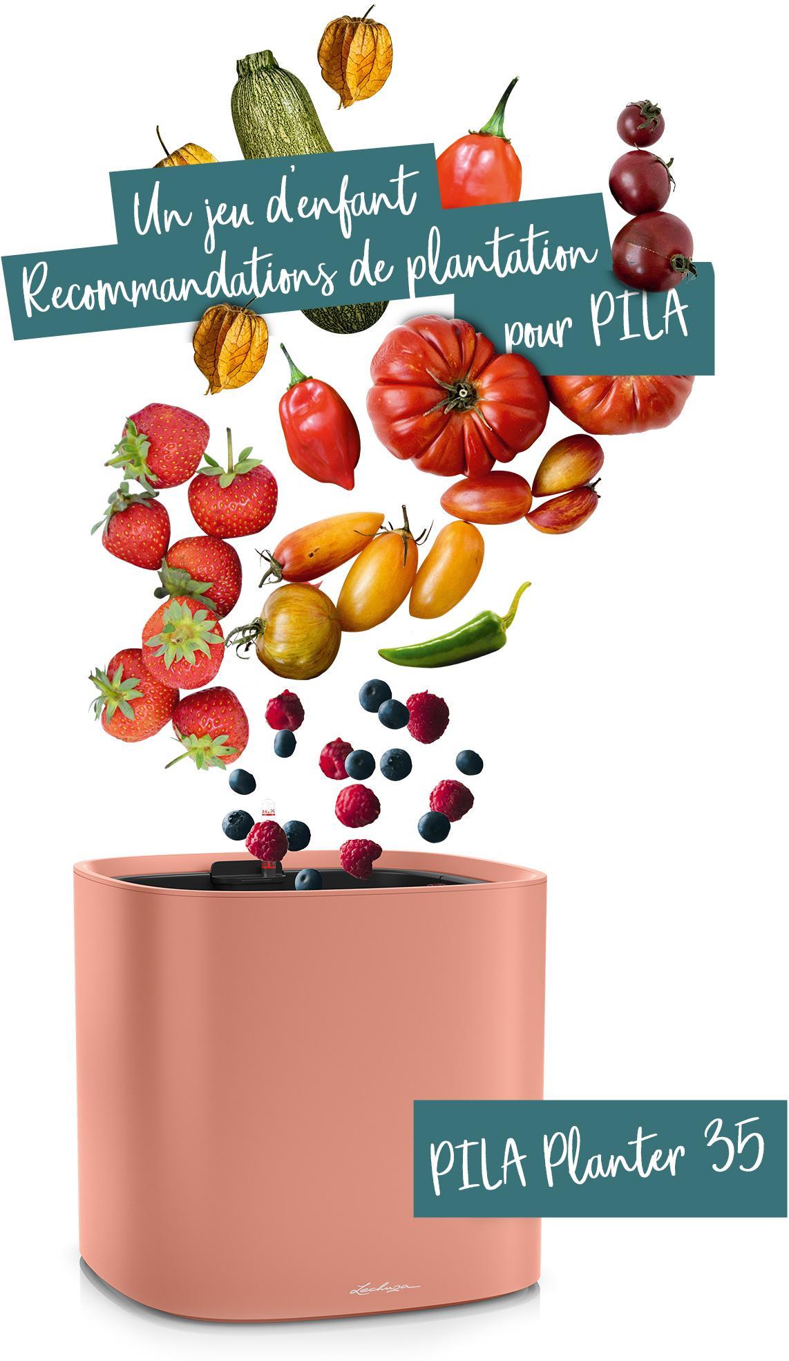 PILA Planter 35 recommandé pour les fruits et légumes