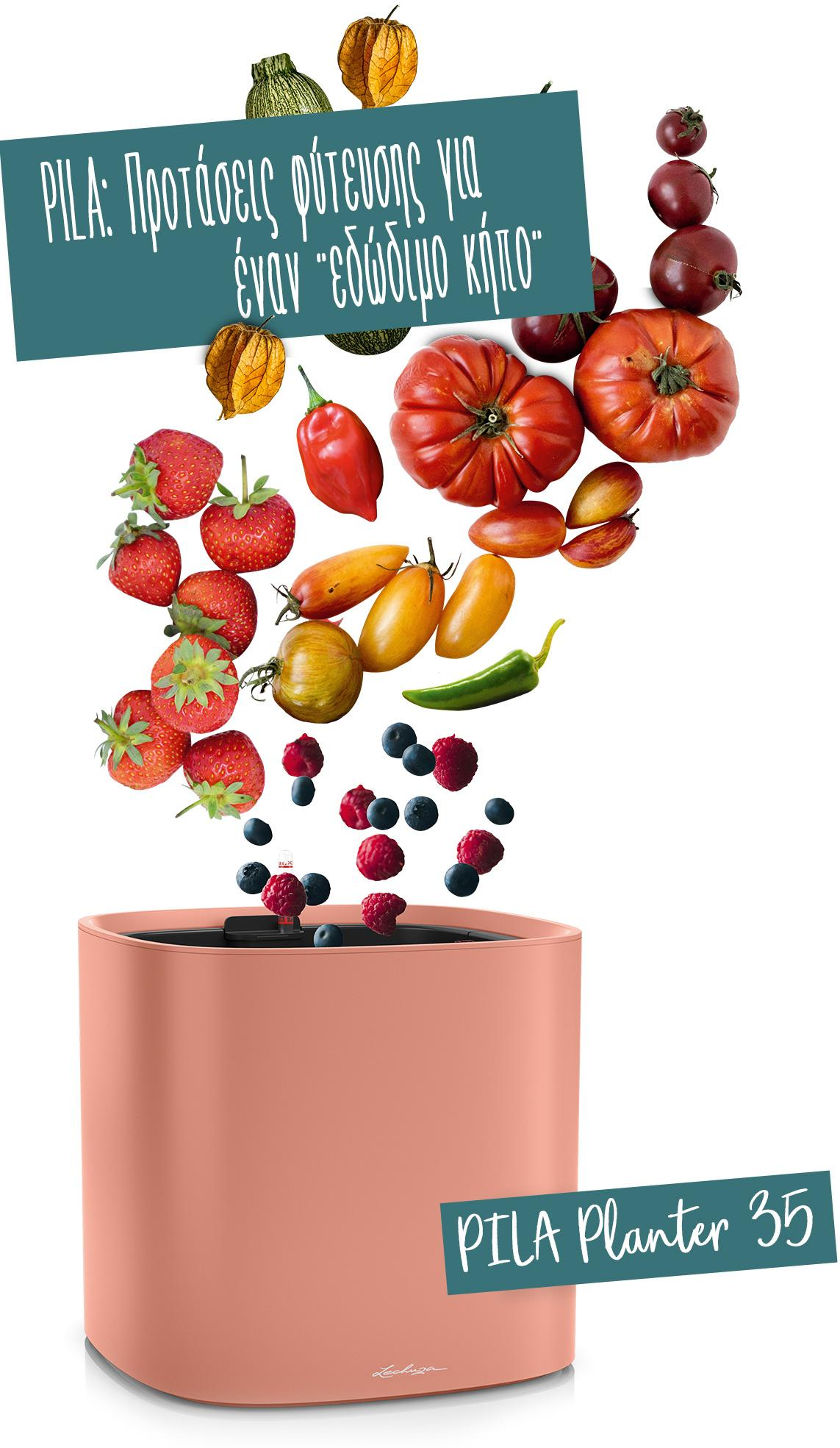 Το PILA Planter 35 συνιστάται για φρούτα και λαχανικά