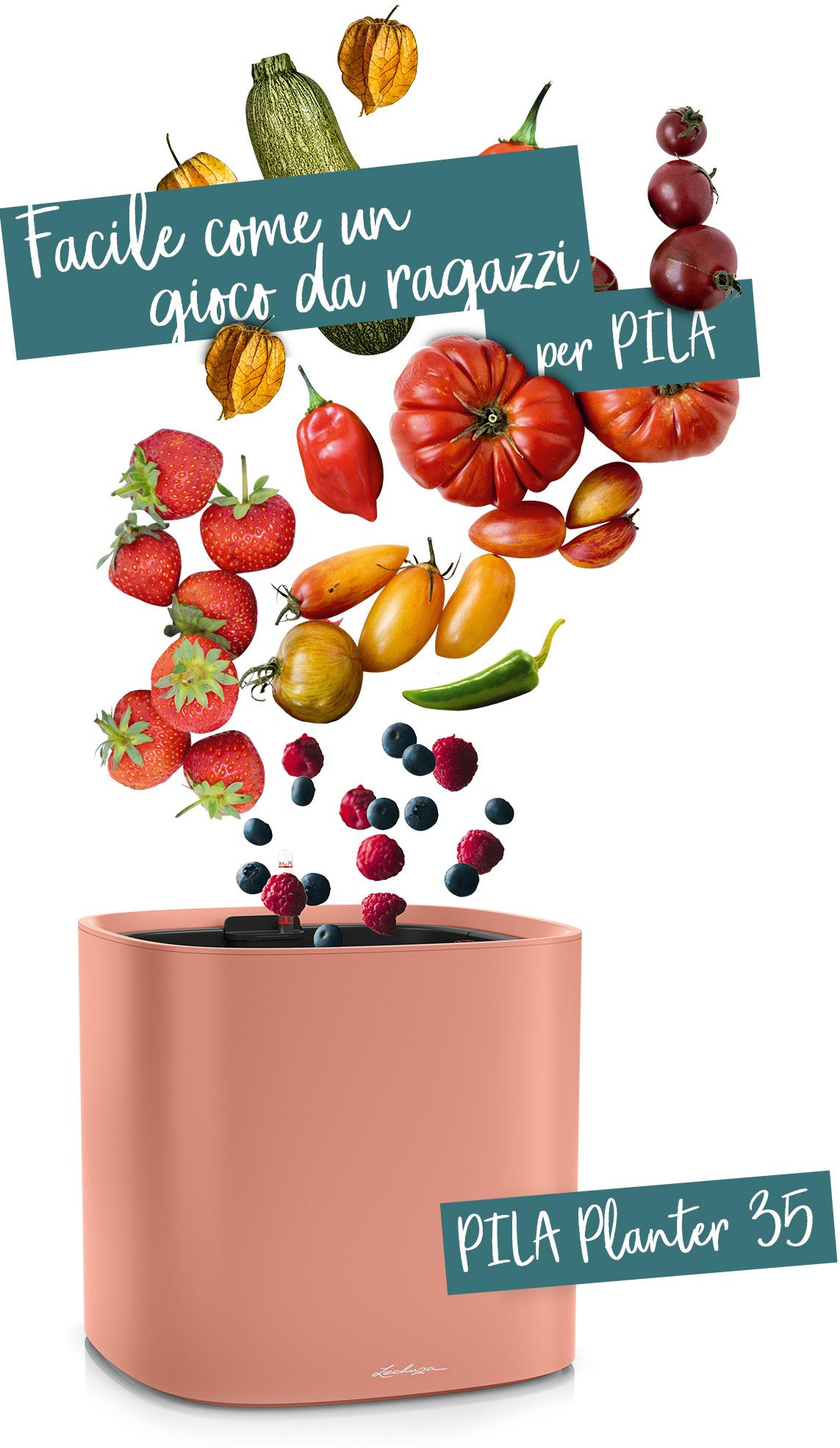PILA Planter 35 raccomandato per frutta e verdura