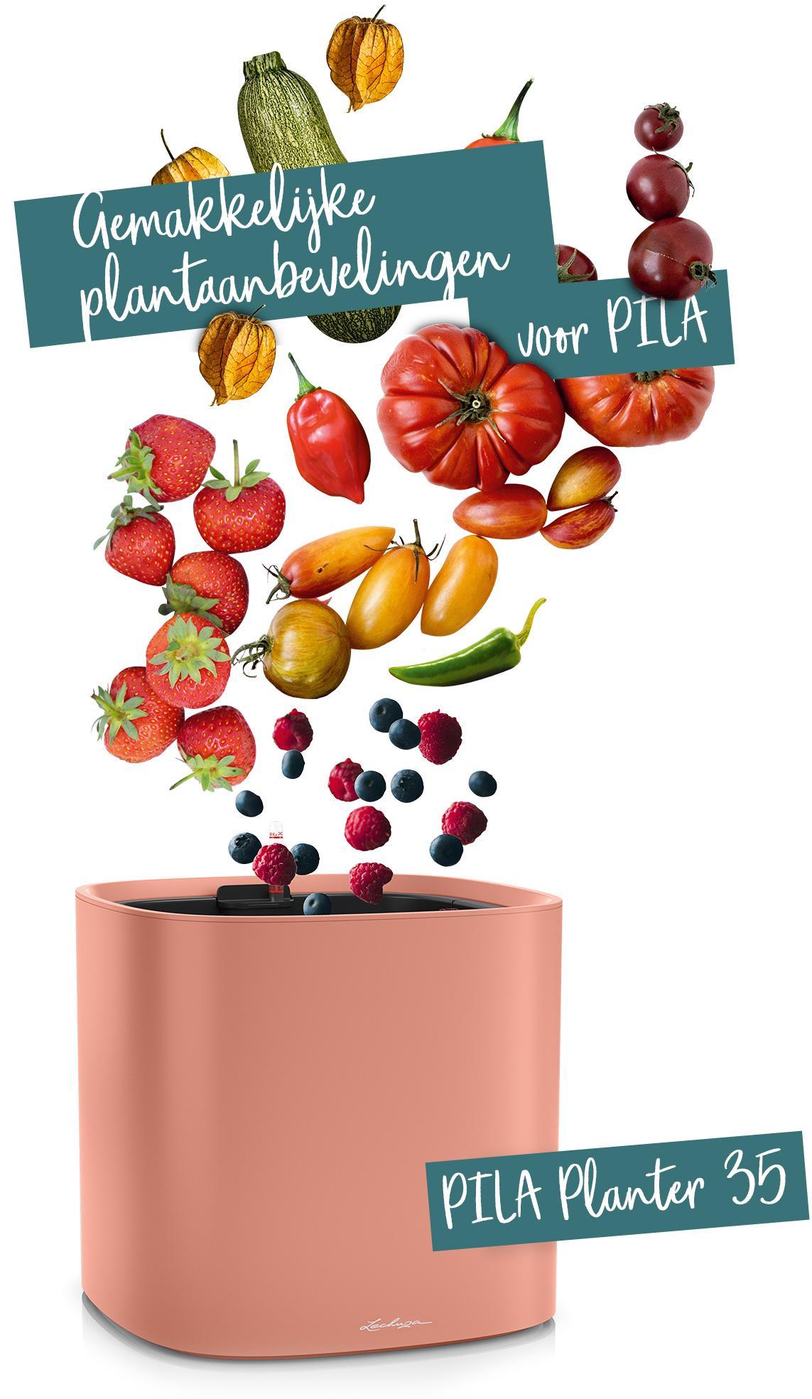 PILA Planter 35 aanbevolen voor groenten en fruit