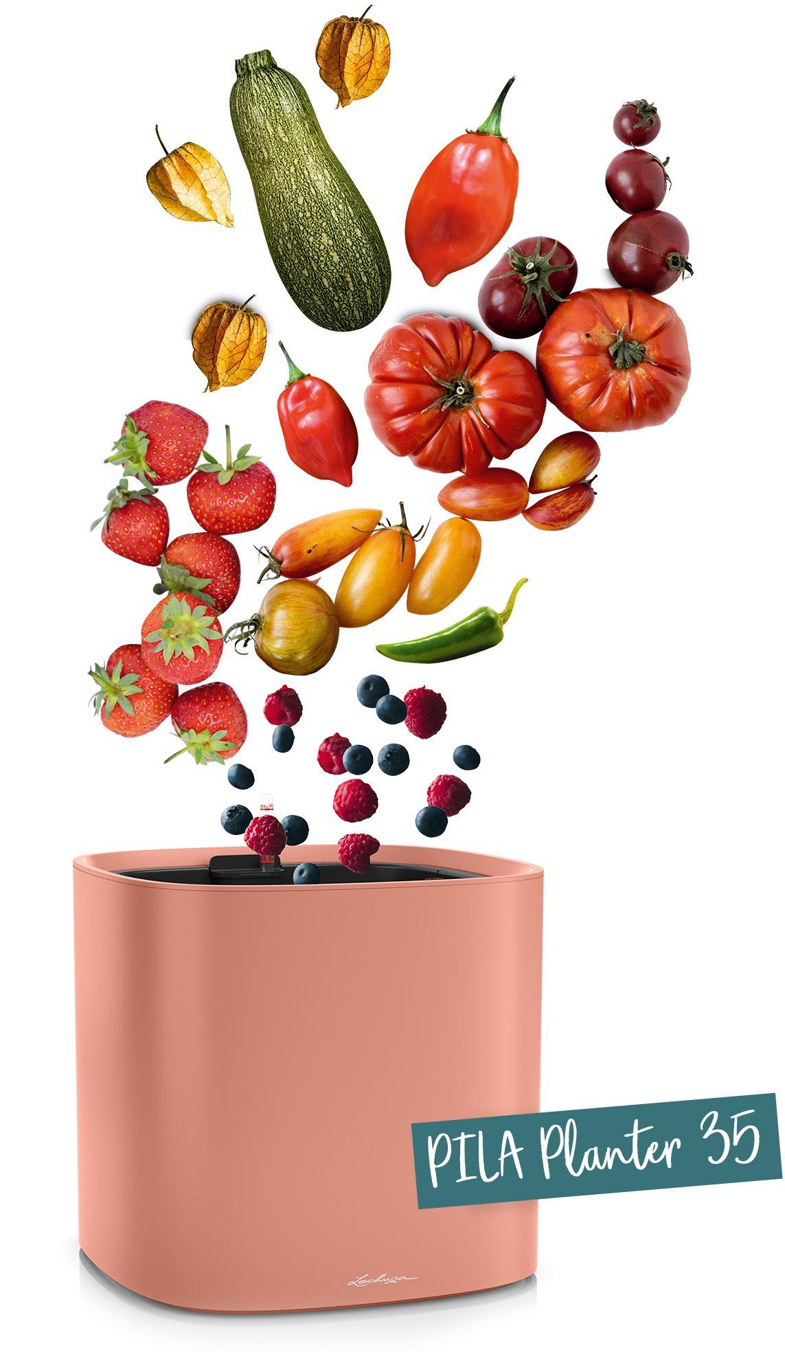 PILA Planter 35 рекомендуется для овощей и фруктов