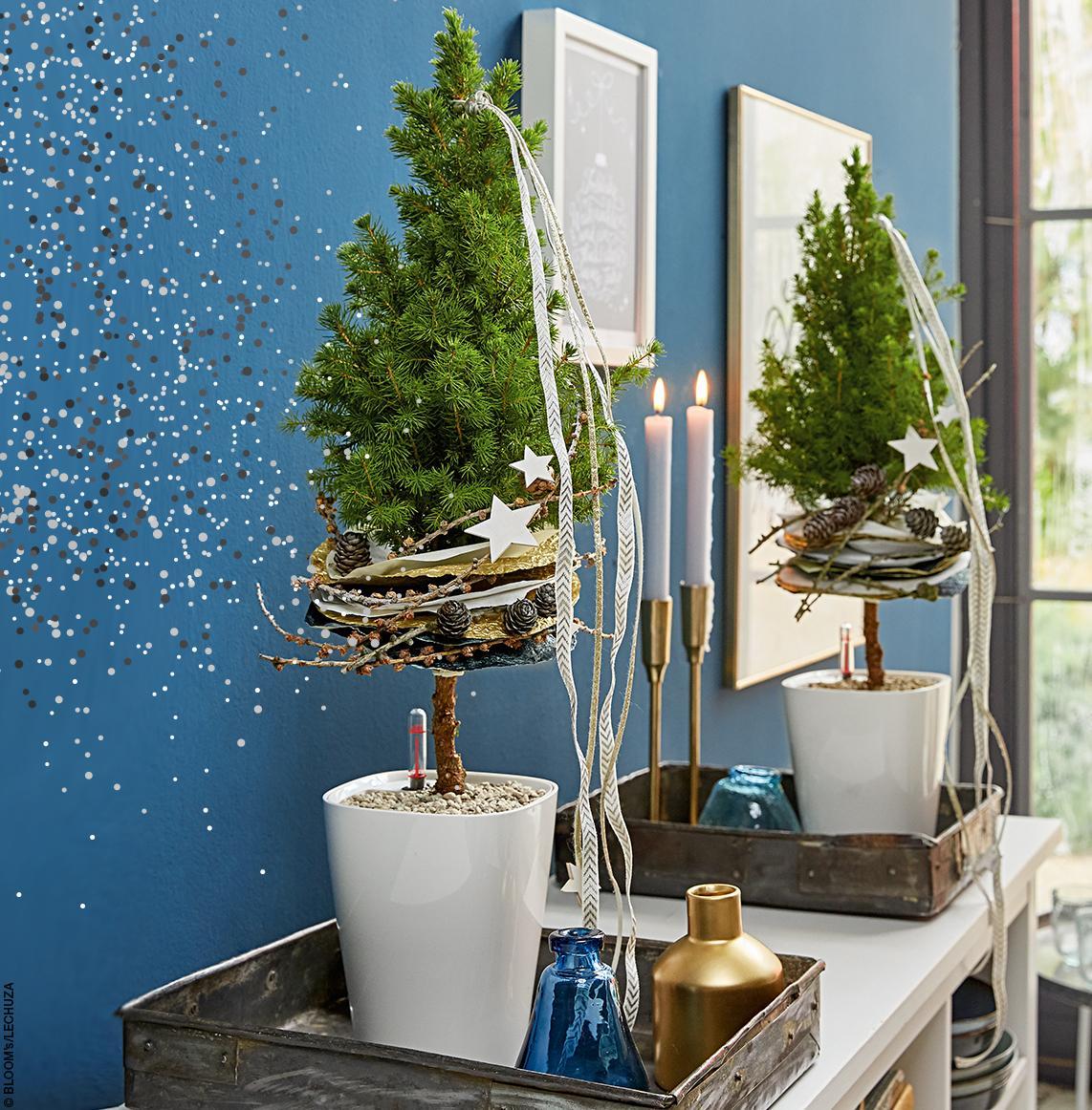 LECHUZA DELTINIs weihnachtlich dekoriert