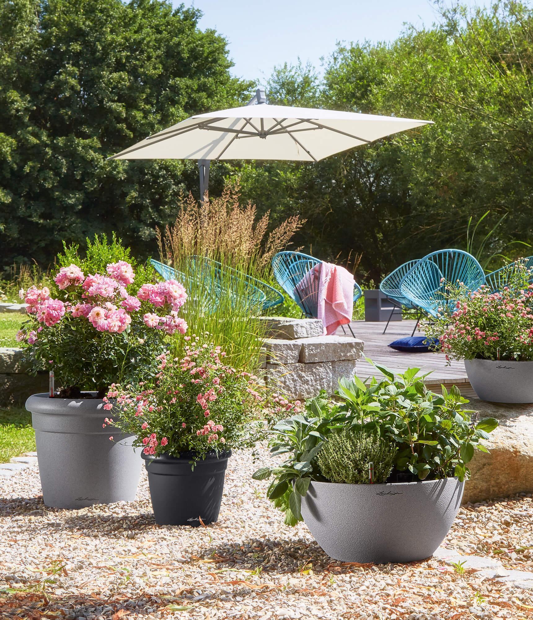 the Mediterranean RUSTICO Color and the bowl planter CUBETO Stone