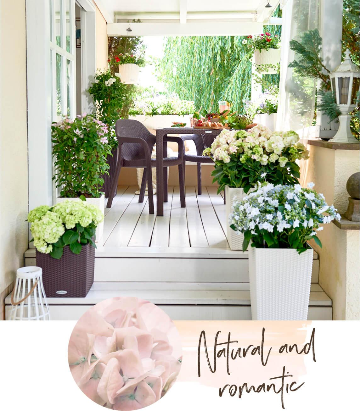 Country house style garden
