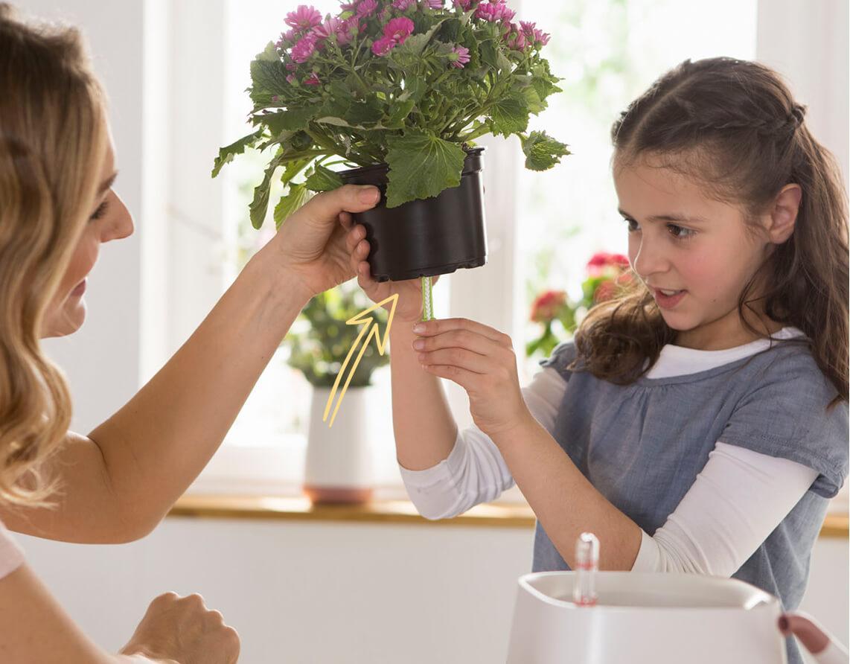 Zo eenvoudig kan de verzorging van planten zijn Stap 1