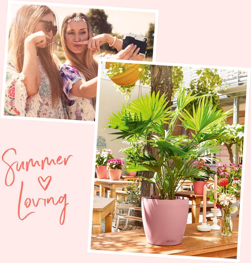 Macht gute Laune und Lust auf den Sommer