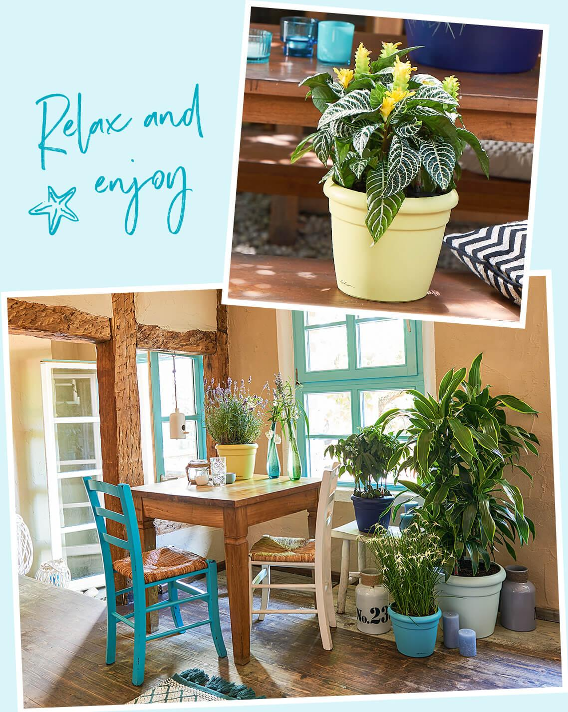 Создайте отпускное настроение в своей гостиной