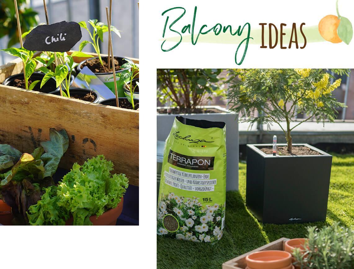 Ideas para plantas autoabastecibles en balcones