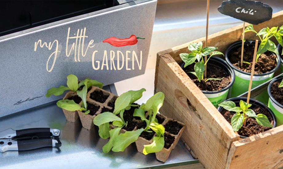 Gut gemocht Urban Gardening - Pflanzen auf Balkon & Terrasse   LECHUZA WQ91