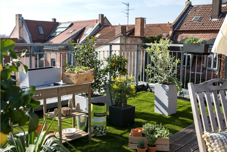 Hierbas y verduras en balconeras