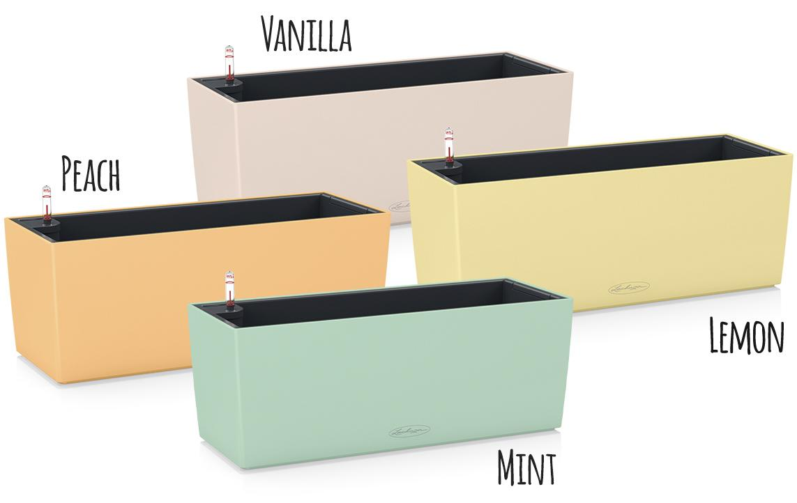 'Vier Balkonkästen LECHUZA Balconera Color in den Sonderfarben vanilla