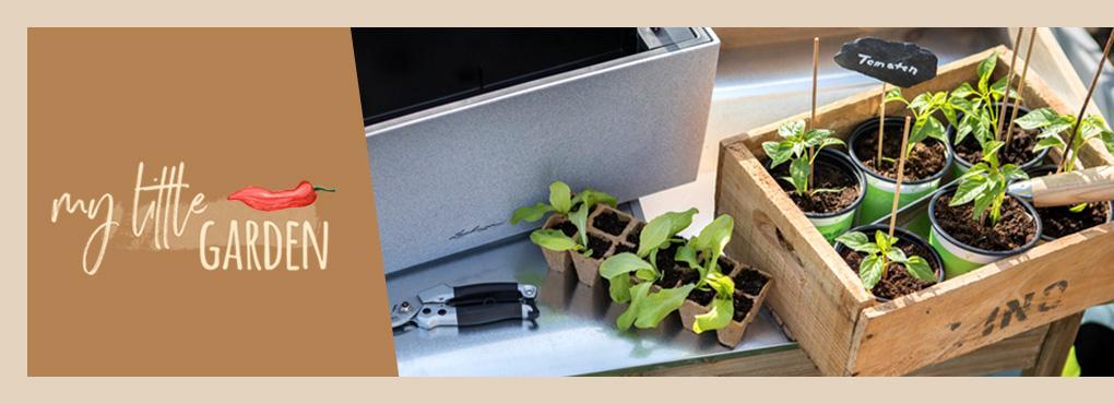 JARDINERÍA URBANA Plantas en balcones y terrazas