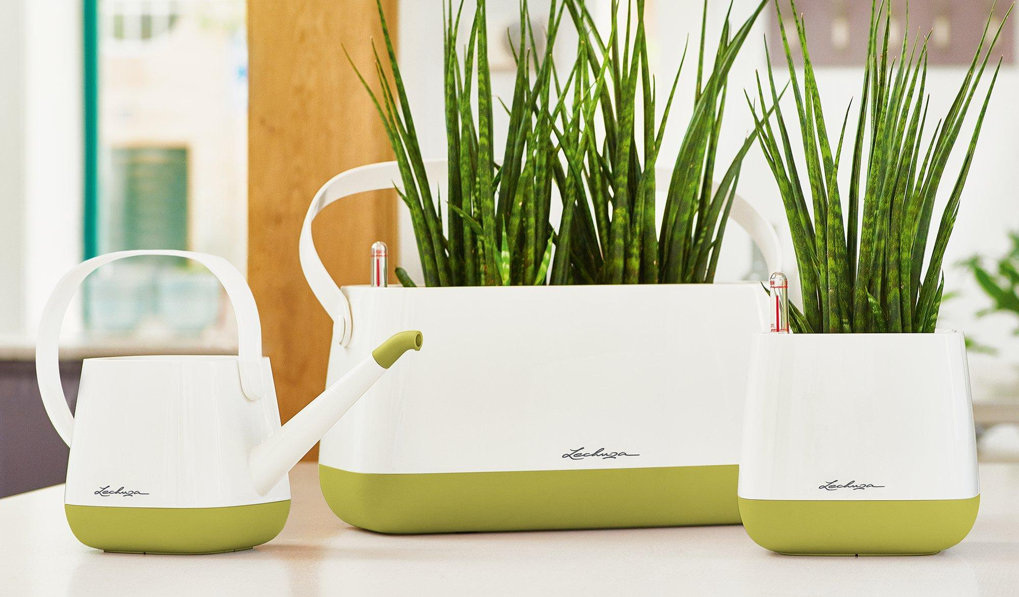 le_yula-pflanztasche_product_content_set