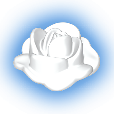 30250740_sparepart/ROSE PETAL OPENED WHITE