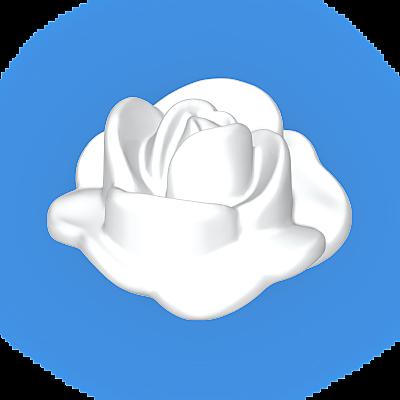 30250740_sparepart/Rose blanche ouverte