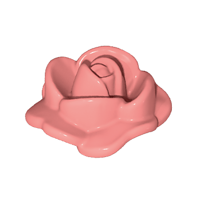 30253060_sparepart/Rose Petal Open
