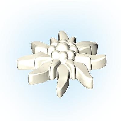 30256622_sparepart/Fleur blanche