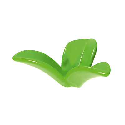 30258952_sparepart/Plante verte à 3 feuilles