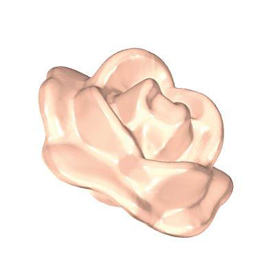30277830_sparepart/rose fleurie