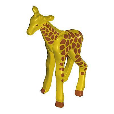 30623762_sparepart/Giraffe-Klein