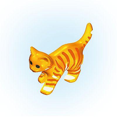 30630534_sparepart/Katzenjunges gehend