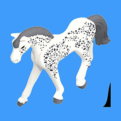 30634113_sparepart/Cheval blanc