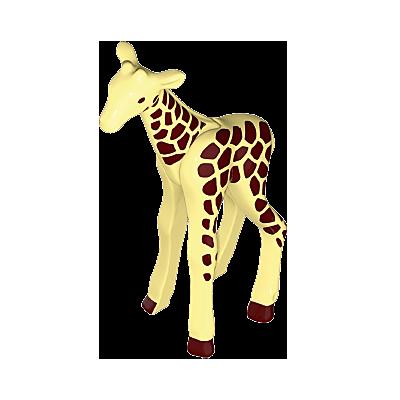 30638676_sparepart/Giraffe-Klein
