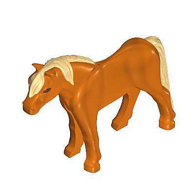 30653310_sparepart/Pony 11