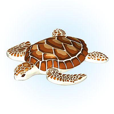 30662983_sparepart/Meeresschildkröte