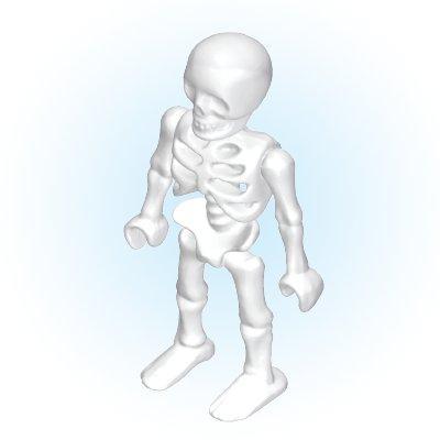 30667460_sparepart/Skelett