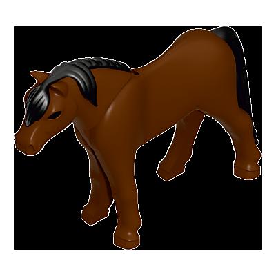 30667652_sparepart/Pony 11